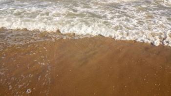 Сдам апартаменты у моря - P_20170901_172823.jpg
