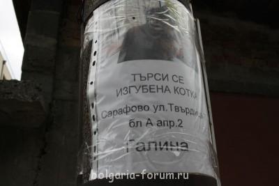 Забавные болгарские вывески. Пополняйте коллекцию  - IMG_5842.JPG