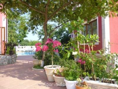 Сдается небольшой апартамент в Созополь 2 мал.комнаты  - P1010203.JPG